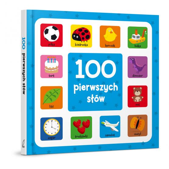 Książka 100 pierwszych słów Praca zbiorowa