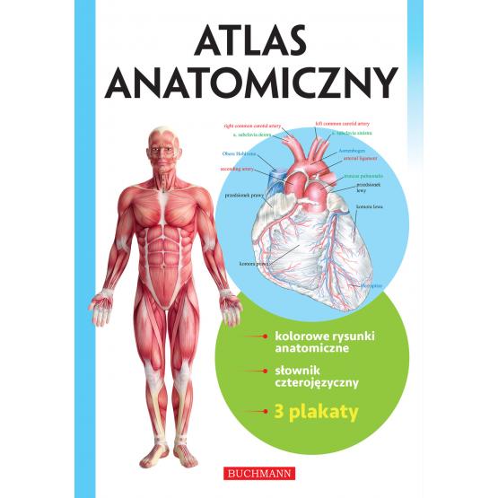 Książka Atlas anatomiczny Praca zbiorowa