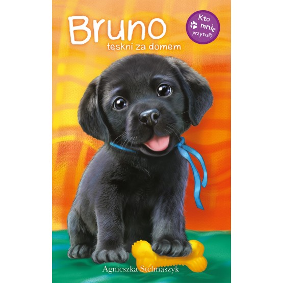 Książka Kto mnie przytuli? Bruno tęskni za domem Stelmaszyk Agnieszka