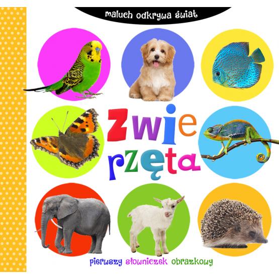 Książka Maluch odkrywa świat. Zwierzęta Praca zbiorowa