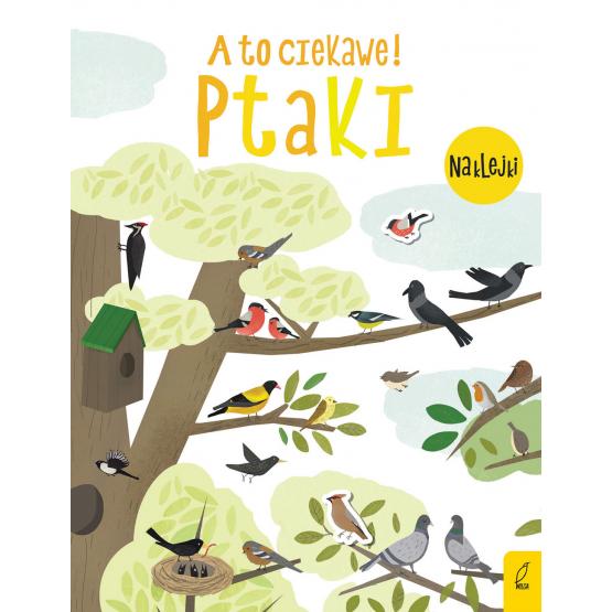 Książka A to ciekawe! Ptaki Praca zbiorowa