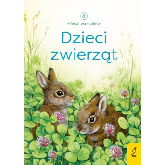 Książka Młodzi przyrodnicy. Dzieci zwierząt Emily Bone