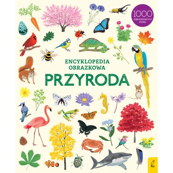 Książka Encyklopedia obrazkowa. Przyroda Praca zbiorowa