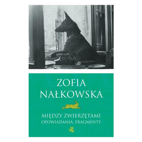 Książka Między zwierzętami Nałkowska Zofia