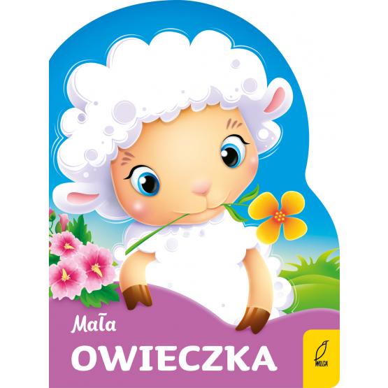 Książka Mała owieczka Praca zbiorowa