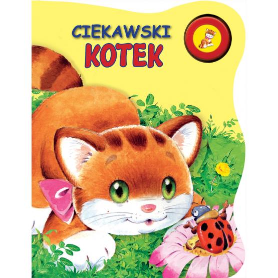 Książka Ciekawski Kotek Kozłowska Urszula