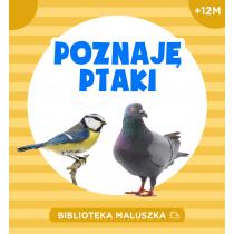 Praca zbiorowa Poznaję ptaki
