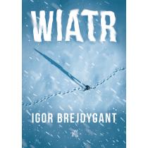 Igor Brejdygant Wiatr