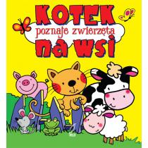Praca zbiorowa Kotek poznaje życie na wsi. Pianki