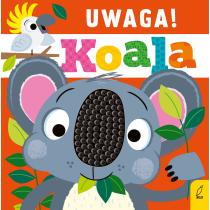 Praca zbiorowa Uwaga, koala!
