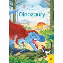 Emily Bone Młodzi przyrodnicy. Dinozaury