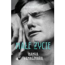 Hanya Yanagihara Małe życie