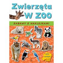 Sarna Katarzyna Zwierzęta w zoo